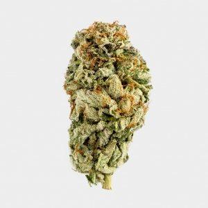 marijuana news marijuana dispensary oklahoma marijuana aurora Cannabis
