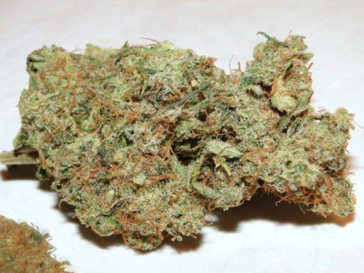 medical marijunana desipensary effects of marijuanna marijuanna stocks