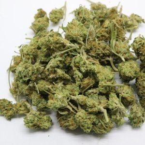Buy Marijuana marijuana dispensary Buy weed online Seaweed Strain cannabis hybrid recreational marijuana states percy hervin marijuan