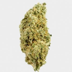 White Widows Strain recreational marijuna medical marijuana card Buy White Widows Cannabis buy cannabis online