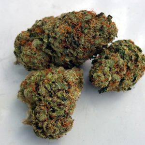 khalifa kush Indicapercy hervin marijuana medical marijuana registry medical marijuana doctors near me