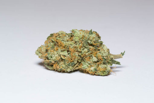Gorilla Glue (AAAA) Sativa Marijuana online dispensary