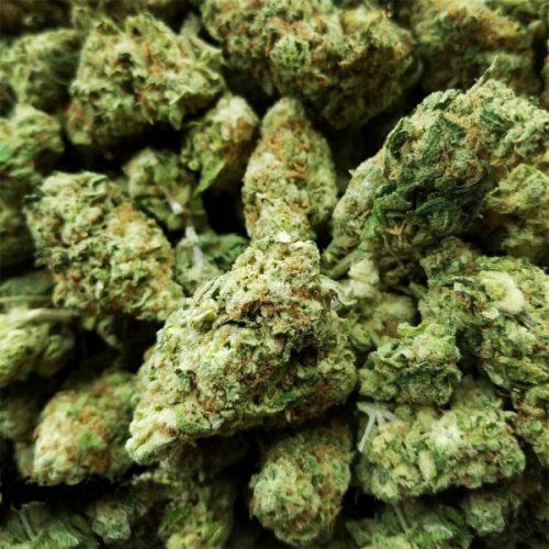 Hawaii-Skunk Sativa Cannabis online shop