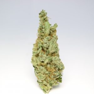 Organic Chocolope Kush Sativa Cannabis for sale Online cannabis shop