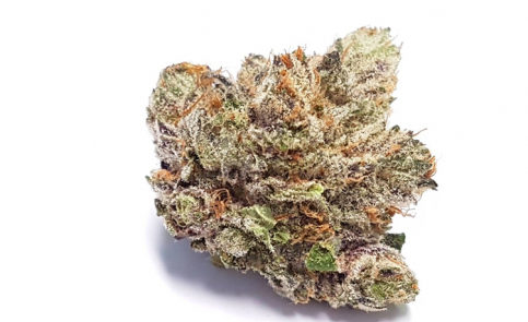 Purple Candy (AAAA) Sativa Cannabis for sale online store