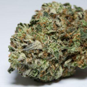 Rockstar Cannabis (AAA) Sativa Sales online Rockster