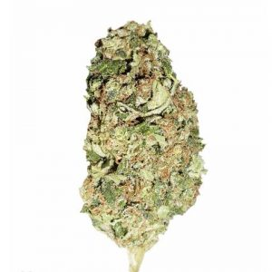 Sour Diesel Kush Sativa Cannabis Online Shole, Cannabis for Sale