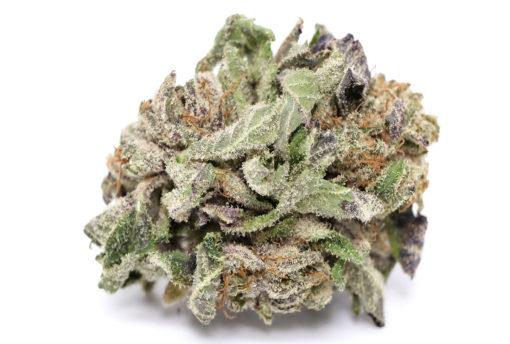 Space Queen (AAAA) Sativa Cannabis Store